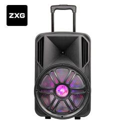 Caixa acústica DJ de plástico com bateria recarregável PA Armário Rádio PRO amplificadores misturadores de áudio do Sistema de Cinema em sistema de microfone sem fio dos altifalantes do amplificador de guitarra