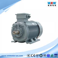 Ie3 IE4 IE5 CCC CE aprobó tres fase Motor eléctrico de inducción AC motores asíncronos 0.12~800kw