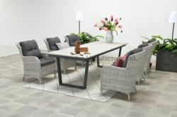 판매 등나무 대나무 의자 안뜰 옥외 땡땡 울리는 가구를 가진 테이블 L265cm를 먹는 옥외 현대 식사 의자 정원에 세트 식사