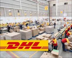 DHL Express China إلى الإكوادور سعر الخصم منخفض للغاية