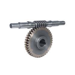 Ver et arbres de pignon du moteur à engrenages Diamètre alésage en nylon laiton de dents en acier inoxydable pour les réductions de vitesse de transmission du réducteur de la partie jeu de pignons en aluminium et les engrenages à vis sans fin