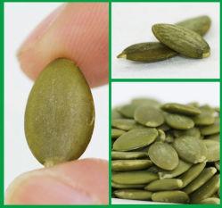 2019 Культура гайки по конкурентоспособной цене семян подсолнечника семена тыквы орехов