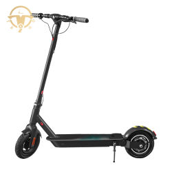 Mini-model 350W 36V 8ah elektrische Kick Scooter Skateboard Scooter Voor Unisex