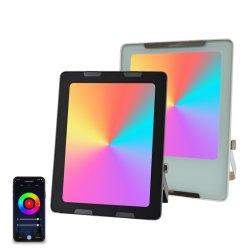 30W Smart RGB LED-schijnwerpers schijnwerper Tuya APP afstandsbediening Bedien de flitslichten voor gebruik binnenshuis met IP66 dimbare Spotlight-wand Was licht voor feest