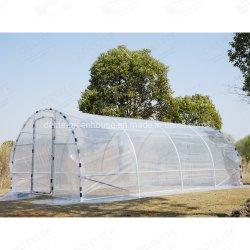 Jardin Jardin Polytunnel parasol Green House Plant Chambre personnalisable Polytunnel serre direct des prix d'usine 20x10 FT 6X3 M