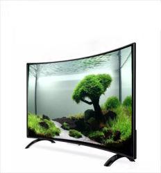 2020 neues Modell 32 40 43 49 Zoll gebogener LED-Plasma intelligenter Fernsehapparat mit 2USB