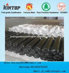 Une membrane étanche EPDM pour toit