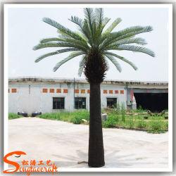 人工 Cycas Revoluta の高い模造の人工的な植物はヤシの木を植樹する