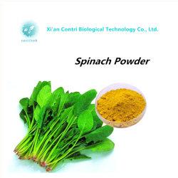 مقتطف Spinach Powder طبيعي