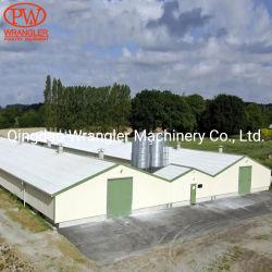 Completare la strumentazione Breeding a terra della strumentazione commerciale del pollo di programmi di costruzione di alloggi del pollame