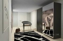 خزانة غرفة نوم الباب المنزلق فوق البنفسجية ذات اللمعان العالي والمرآة (HF-EY029)