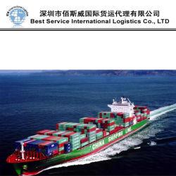 Spedizione del contenitore/spedizioniere internazionale dell'agente di trasporto del mare/trasporto marittimo (FCL 20 '' 40 '')