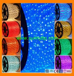 Cuerda al aire libre Pre-Assembled LED con cable de alimentación y la tapa de cierre