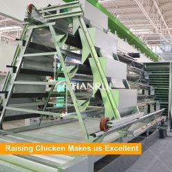 Diseño de la escalera completamente automática de 3 capas de un tipo de jaulas de cría de la capa de pollo a la venta