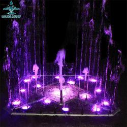 Fontana di acqua musicale di Dancing di disegno professionale dell'interno o esterno