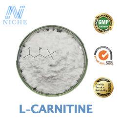 아세틸 L Carnitine는 약제 급료 L Carnitine 분말 빠른 출하 CAS를 도매한다: 541-15-1