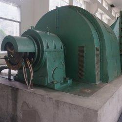 de HydroTurbine van het 100kw200kw 500kw 1MW 2MW 5MW Pelton Wiel voor de HydroPrijs van de Turbogenerator van het Water van de Macht