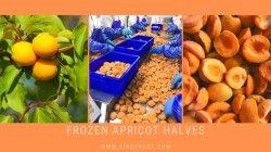 Las mitades de albaricoque congelado IQF, albaricoques, las mitades de mitades de albaricoque IQF congelado,dados albaricoque albaricoque IQF, cubos IQF, albaricoques cortados,fruta IQF,fruta congelada, alimentos congelados