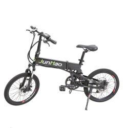 20 インチパワーモーター電動自転車(スポークホイール付き)リチウムバッテリー