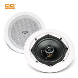 Gute Qualität 30W PA Decke Bluetooth WiFi Lautsprecher mit Hochtöner (LTH-8316)