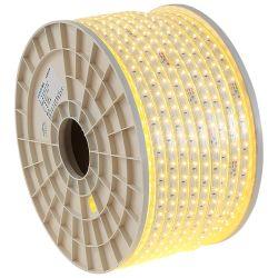 Faixa de luz LED SMD com saída de fábrica RGB 5050 decoração colorida PI65 12V max Lâmpada do Corpo branco luminoso à prova de potência de cobre