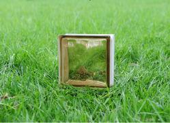 Belle brune en brique de verre (JINBO nuageux)