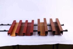 Le WPC de bonne qualité des plafonds de vente pour la décoration de toiture
