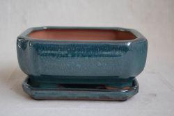 A olaria Bonsai Bonsai vasos potes de vidro