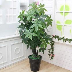 Casa de planta artificial de plástico mayorista decorativos árbol Bonsai