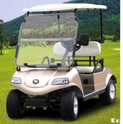 Carros de Golfe eléctrico/Carrinho/carrinho (DEL3022G, 2 lugares)