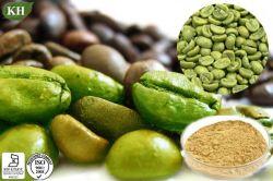 Acido clorogenico 50%, estratto verde di totale sottile dell'ingrediente del chicco di caffè della caffeina 4%