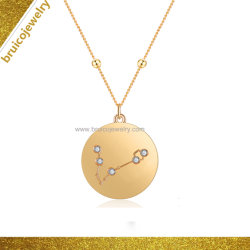 In het groot Gele Goud Geplateerde de heup-Hop van de Medaille van de Dierenriem Juwelen 925 de Echte Zilveren Tegenhanger van de Halsband