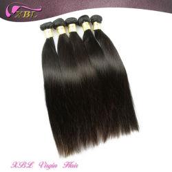 柔らかい滑らかな 8A バージンのマレーシアの毛完全な Cubicle の毛の織り