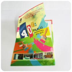 Kundenspezifisches Dateihalter-Dateifaltblatt des Plastik pp. A4