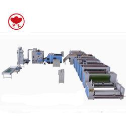 Pet/PP Geslagen Gevoelde Geotextile van het Polypropyleen Naald Machine