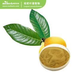 Blad het Zuur Zuur Ursolic/Maslinic 1% Poeder van Extract/25%98% van Loquat 10%/Eriobotrya Japonica