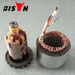 비손 5kw 구리 철사 고정자 가솔린 발전기는 고정자 발전기를 분해한다