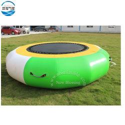 OEM屋外スポーツの/Water公園のゲームのための膨脹可能な水警備員