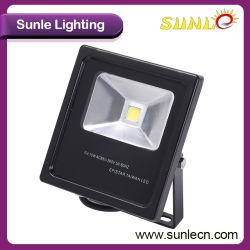 Литой алюминиевый корпус черного цвета Светодиодный прожектор (SLFC210)