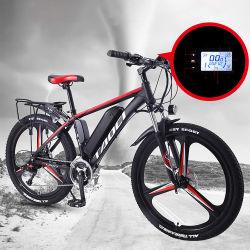 26inch 350With500W /1000W grosse Energien-elektrisches Gebirgsfahrrad-Lithium-Energien-Fahrrad mit entfernbarer Batterie