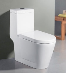 Un morceau de toilettes 1