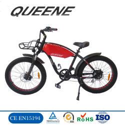 Queene/750W Giant Mountain Bicycle Graisse électrique rapide des pneus de vélo électrique