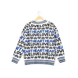 스웨터 2018 신가을에는 밝은 실크 원형 칼라 머리 긴팔 스웨터 블라우스 우먼이 입혀있습니다