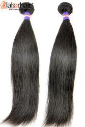 Extensões não processadas de trama indianas do cabelo humano do Virgin do cabelo humano do Virgin reto de seda de 100%
