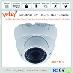 1080P屋外のドームCCTVのカメラの製造業者スマートなIPのカメラ