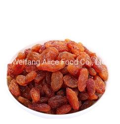 Горячий продаже сушеного винограда Sultana изюм красный изюм