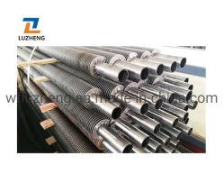 China Mill ASTM A312 أنبوب قياسي للبوصة Fin، أنبوب فولاذي Fin A213 T5 T11 T22 لالتوفير القياسي للغلاية