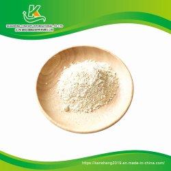 Производство сушеных чеснок и лук порошок
