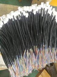 Connettore delle Assemblee di cavo del cablaggio di collegamenti del cablaggio del collegare