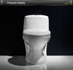 Heißer Entwurfs-Arbeitskarte-Toiletten-Sitz im Osten-Markt Bc-1306